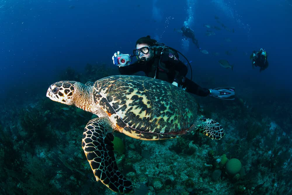 Belize-HUH-1000px-009