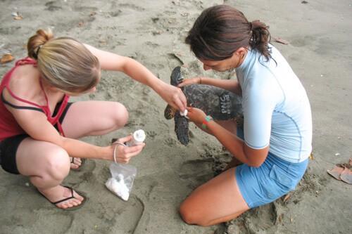 luxury family volunteer vacation in Costa Rica