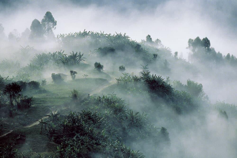 Rwanda-HUH-1000px-020