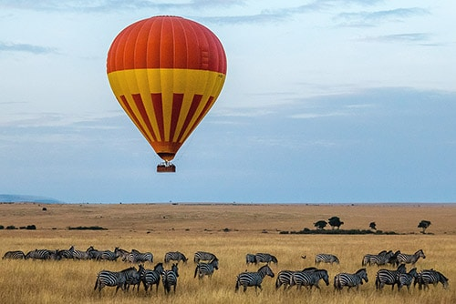 Fulfilling luxury vacation giraffe in Kenya