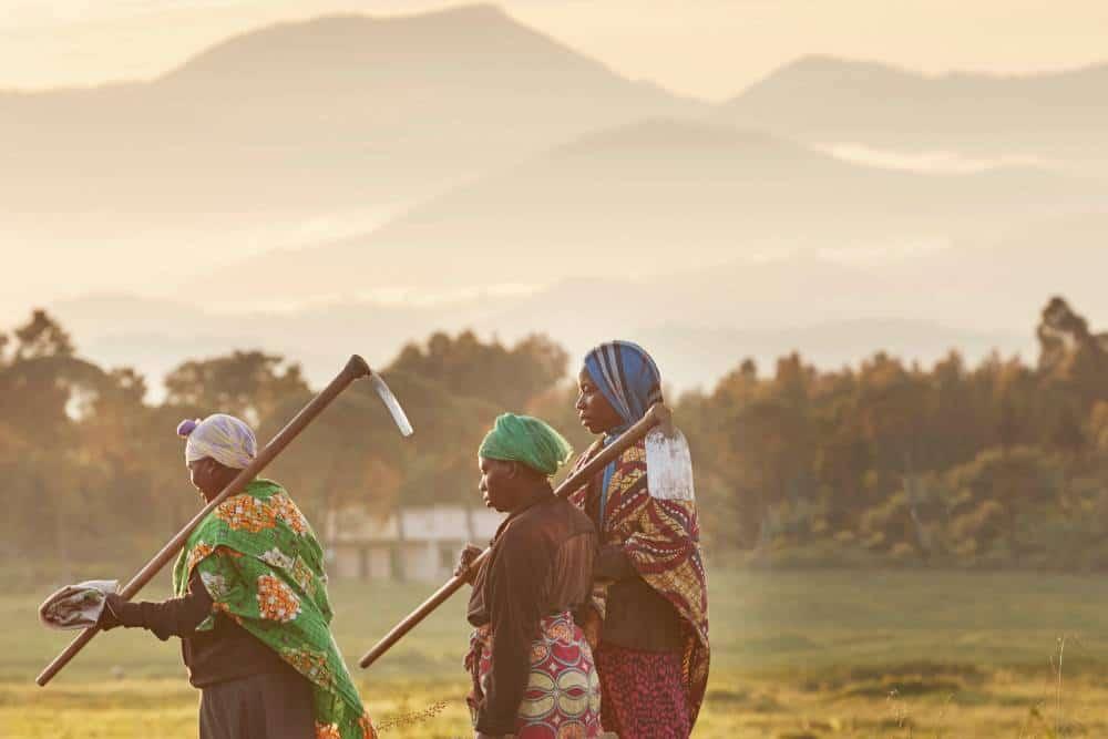 Luxury volunteer vacation Rwanda